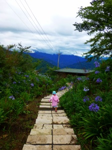 Path outside our chalet at Mingqing Farm (眀琴)